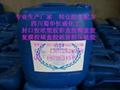 稳定性二氧化氯(液、粉剂)生产可行性报告 2