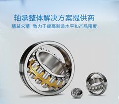 Dalian Ruifeng zhongaxis Technology Development Co., Ltd