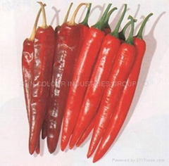 Chilli capsaicin