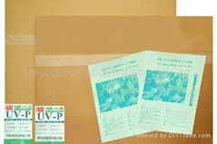 UV-CTP PLATE
