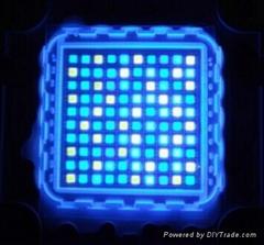 Customized 100W Multichips High Power