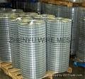 gal welded mesh