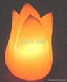 花鹽燈 1