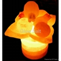 Leaf Bowl Salt Lamp