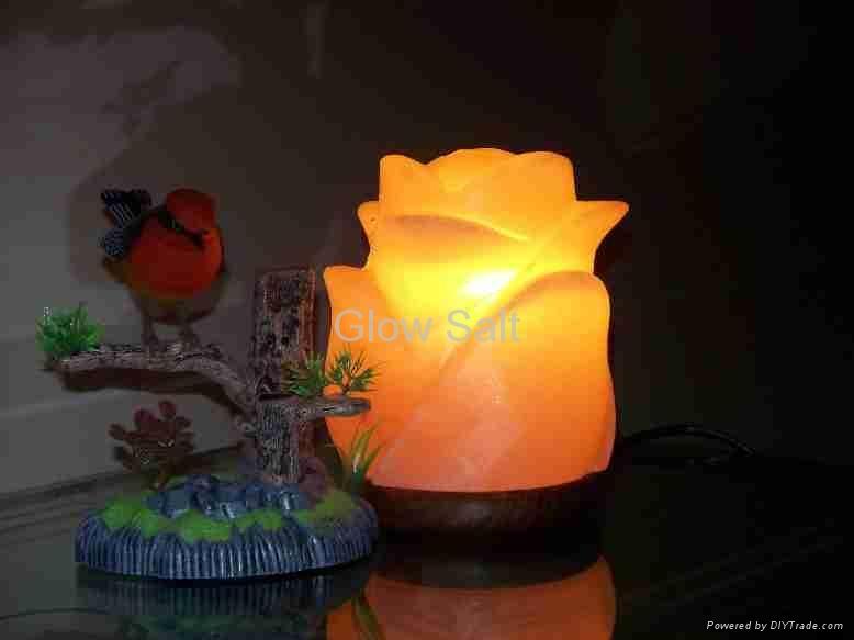 花鹽燈 2