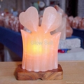 Double hearts salt lamp