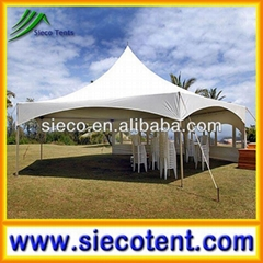 Marquee tent, 2014 new design marquis tent