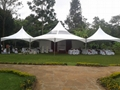 hexgonal wedding tent