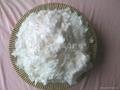 珠力牛奶蛋白纖維 4