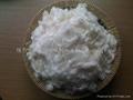 新型珠力牛奶蛋白纖維