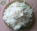 珠力牛奶蛋白纖維長絲 4