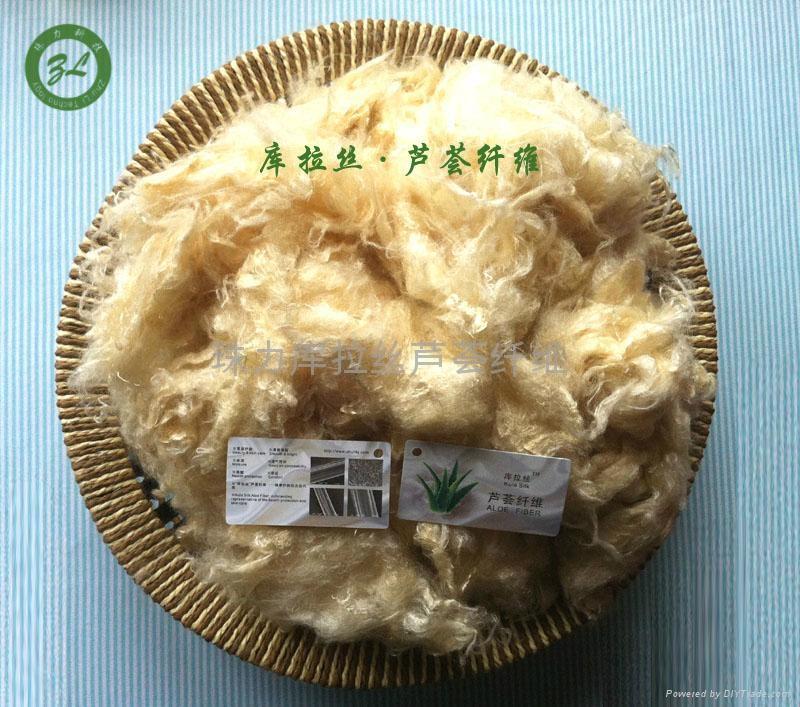 庫拉絲蘆薈纖維 1
