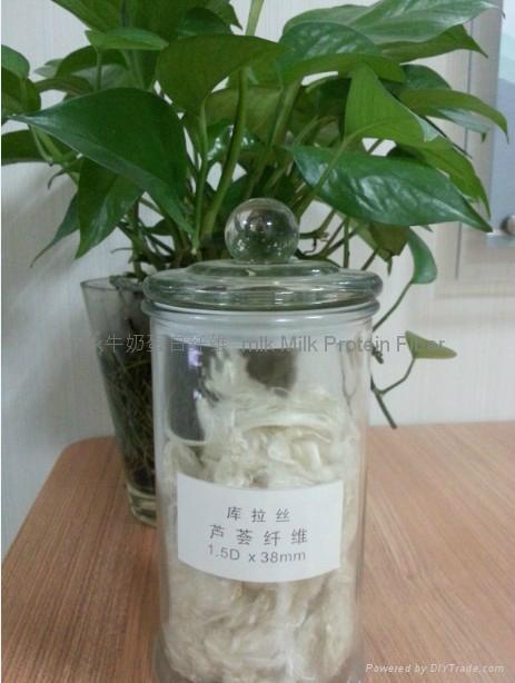 功能性紡織原料蘆薈纖維 1