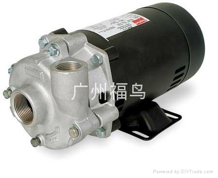 DAYTON离心泵, 增压泵, 叶轮泵, 水泵 7