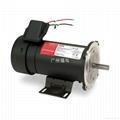 供应DAYTON直流电机(2M170D, 2M170C)