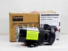 DAYTON泵, 離心泵, 隔膜泵, 水泵