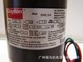 DAYTON电机 马达 直流电