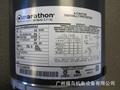 MARATHON电机, 型号: 5KH36MNA445AX