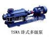 TSWA型多級泵