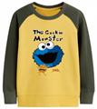 Kids Spring Pullover