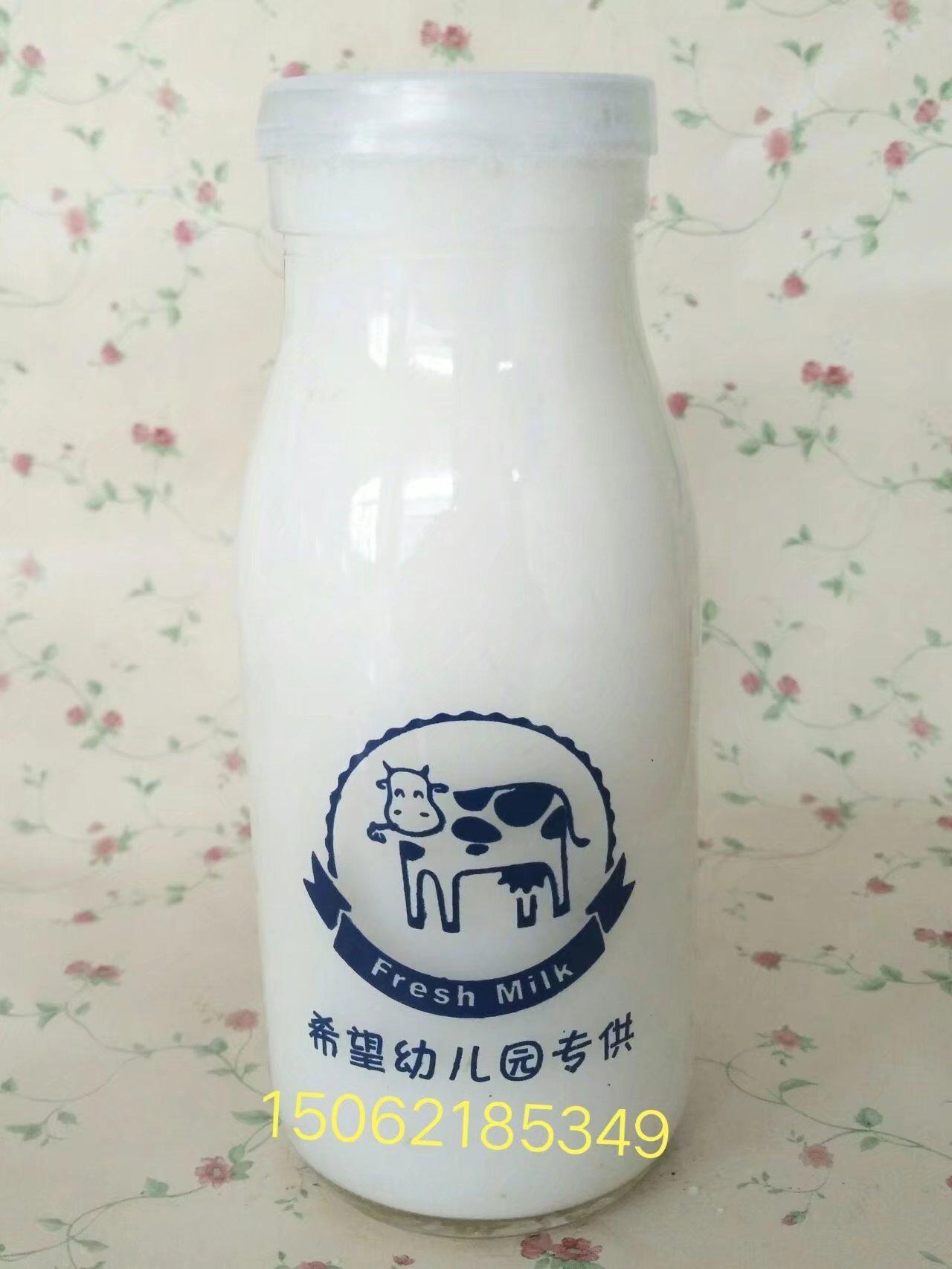 500毫升鲜奶瓶 牛奶瓶 大奶瓶 4