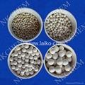 Molecular Sieve 3A,4A,5A,13X,IG(desiccant & adsorbents) 4