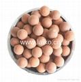 礦化陶瓷球 3