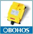 Industrial Crane Wireless Remote Control