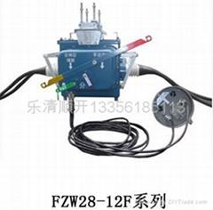 FZW28(VSP5)-12型