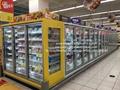 E7 ATLANTA Supermarket Upright Freezer