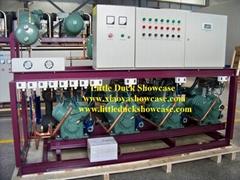 Multiple Compressor Unit