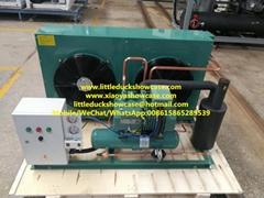 Bitzer Compressor Condensing Unit