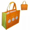 Well-designed PP Woven shopping bag