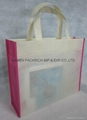 Popular non woven promotional shopping  bag