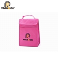 high quality eco friendly non woven cooler bag