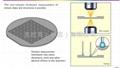 THS-10测量显微镜  4