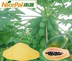 南派純天然木瓜粉