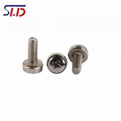 Professional production of crown screw CHDS panel decorative screws