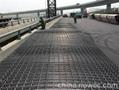 天津鋼觔焊網