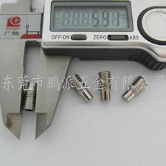不锈钢柱端紧定螺丝DIN915           M6*12