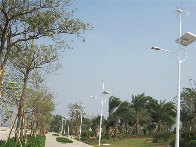 微风启动风力发电机 2