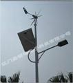 微风启动风力发电机 5