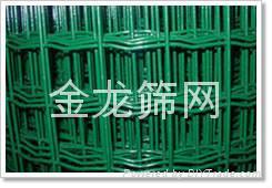 河北安平PVC涂塑荷兰网厂家直销 1