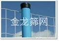 河北安平PVC涂塑荷兰网厂家直销 2