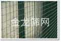 河北安平PVC涂塑荷兰网厂家直销 3