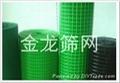河北安平PVC涂塑荷兰网厂家直销 4