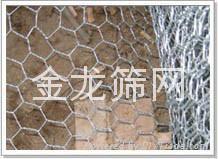 专业供应镀锌六角网