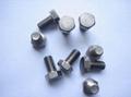 Titanium nut 2