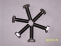 Titanium nut 5