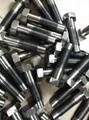 Titanium bolt 4